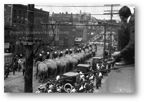 Description: http://www.hsd.org/HistoricReprod/Photographs/People/PH_P_0004_circus%20parade_1918.gif